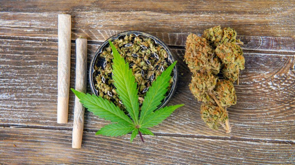 Marijuana | Michigan Goes Recreational for Marijuana Consumption | Featured