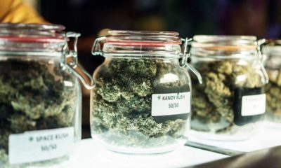 kinds of marijuana in containers | Illinois Rings in New Year with First Day of Recreational Marijuana Sales | Featured
