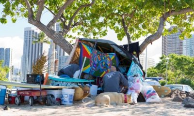 homeless man with his dog in Hawaii | Hawaii Drops to No.2 in Homelessness as Trends Improve | Featured