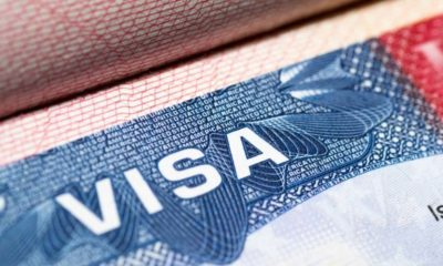Visa Stamp in Passport | Businesses Are Unable to Employ Foreign Workers Due to Freeze on Visas | Featured